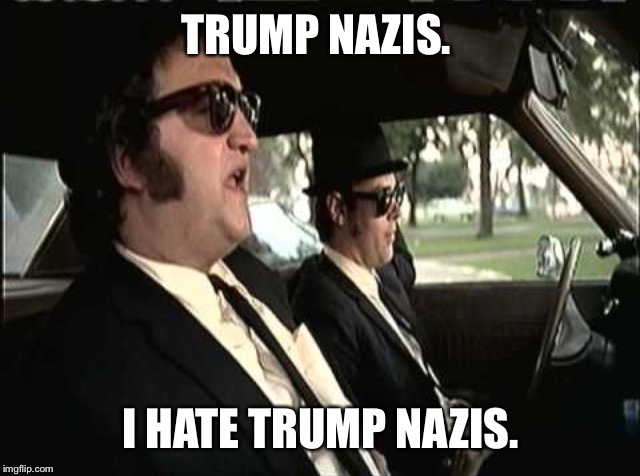 Jake Hates All Nazis Equally | TRUMP NAZIS. I HATE TRUMP NAZIS. | image tagged in blues brothers,donald trump,nazis,kkk,trump rally | made w/ Imgflip meme maker