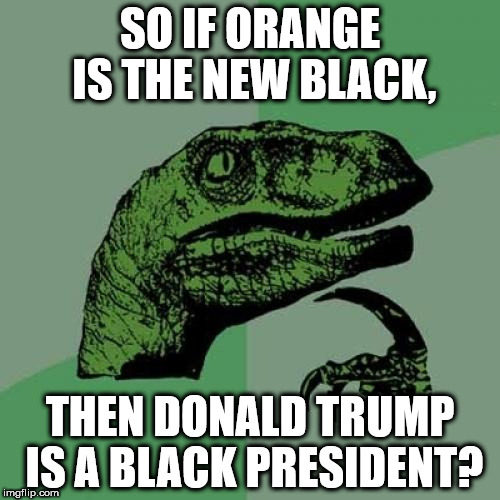 Philosoraptor Meme | SO IF ORANGE IS THE NEW BLACK, THEN DONALD TRUMP IS A BLACK PRESIDENT? | image tagged in memes,philosoraptor | made w/ Imgflip meme maker