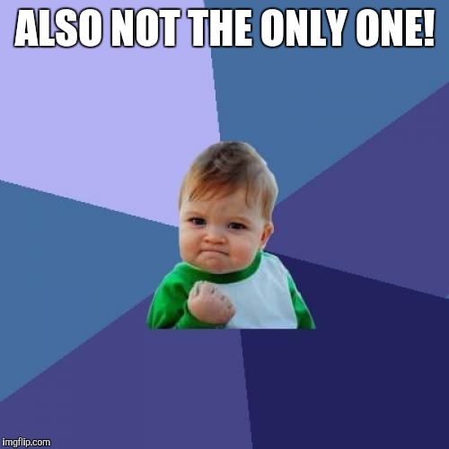Success Kid Meme | ALSO NOT THE ONLY ONE! | image tagged in memes,success kid | made w/ Imgflip meme maker