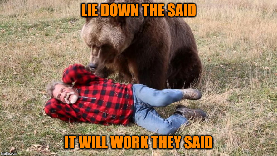LIE DOWN THE SAID IT WILL WORK THEY SAID | made w/ Imgflip meme maker
