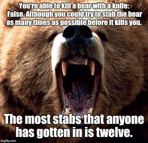 You're able to kill a bear with a knife: False. Although you could try to stab the bear as many times as possible before it kills you. The m | made w/ Imgflip meme maker