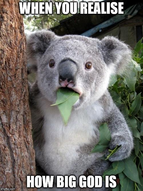 Surprised Koala Meme | WHEN YOU REALISE HOW BIG GOD IS | image tagged in memes,surprised koala | made w/ Imgflip meme maker