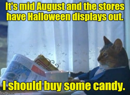 I Should Buy A Boat Cat Meme | It's mid August and the stores have Halloween displays out. I should buy some candy. | image tagged in memes,i should buy a boat cat | made w/ Imgflip meme maker