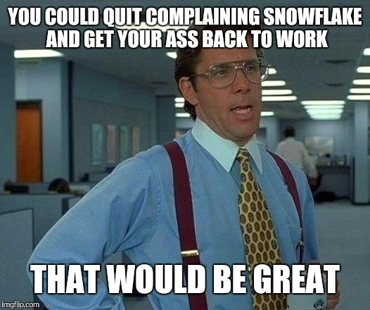 That Would Be Great Meme | YOU COULD QUIT COMPLAINING SNOWFLAKE AND GET YOUR ASS BACK TO WORK THAT WOULD BE GREAT | image tagged in memes,that would be great | made w/ Imgflip meme maker