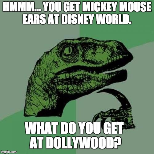 Philosoraptor Meme | HMMM… YOU GET MICKEY MOUSE EARS AT DISNEY WORLD. WHAT DO YOU GET AT DOLLYWOOD? | image tagged in memes,philosoraptor | made w/ Imgflip meme maker