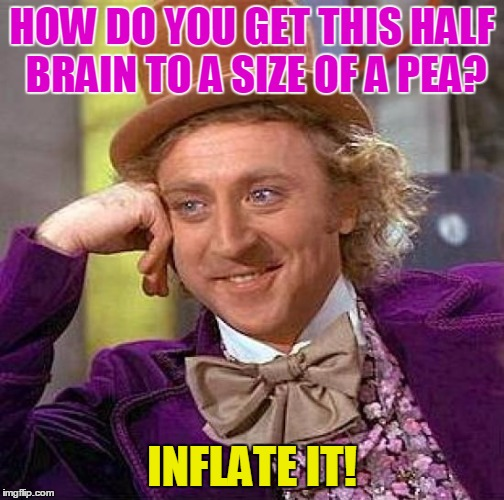 Creepy Condescending Wonka Meme | HOW DO YOU GET THIS HALF BRAIN TO A SIZE OF A PEA? INFLATE IT! | image tagged in memes,creepy condescending wonka | made w/ Imgflip meme maker