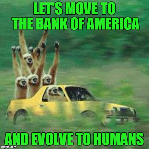 LET'S MOVE TO THE BANK OF AMERICA AND EVOLVE TO HUMANS | made w/ Imgflip meme maker