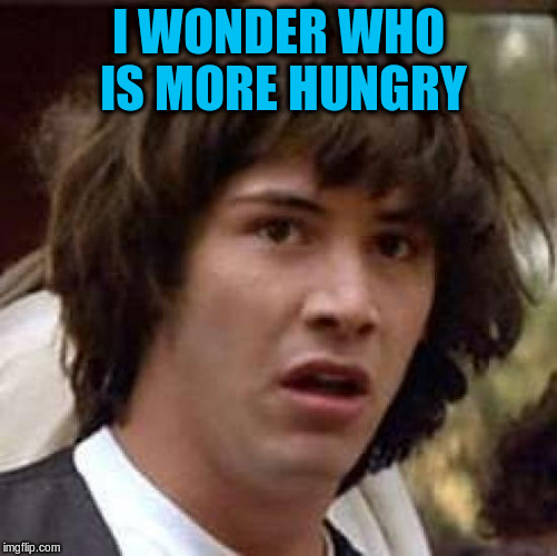 Conspiracy Keanu Meme | I WONDER WHO IS MORE HUNGRY | image tagged in memes,conspiracy keanu | made w/ Imgflip meme maker