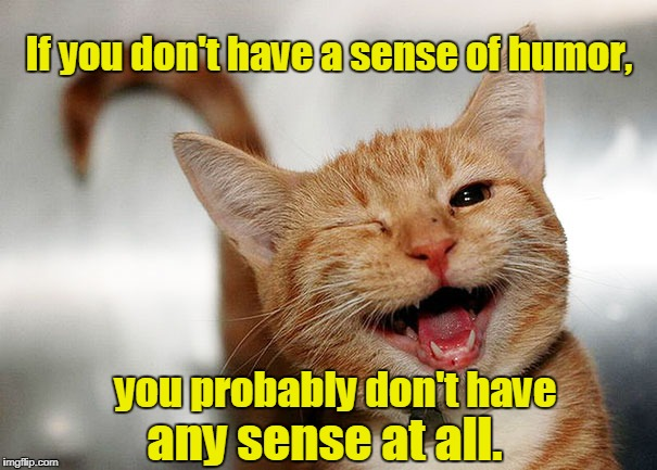 If you don't have a sense of humor, any sense at all. you probably don't have | image tagged in smiling cat | made w/ Imgflip meme maker