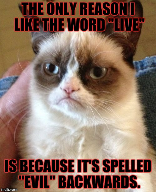"Grumpy Cat Meme | THE ONLY REASON I LIKE THE WORD ""LIVE"" IS BECAUSE IT'S SPELLED ""EVIL"" BACKWARDS. 