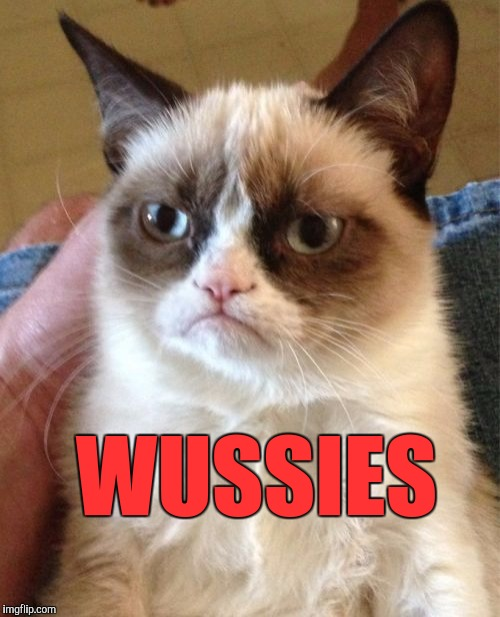 Grumpy Cat Meme | WUSSIES | image tagged in memes,grumpy cat | made w/ Imgflip meme maker