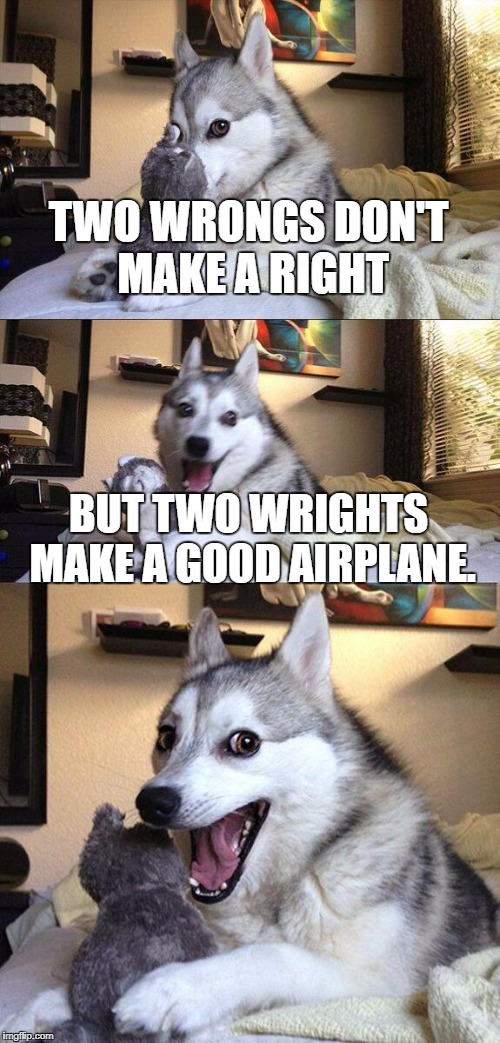 May or may not be stolen from a History Teacher | TWO WRONGS DON'T MAKE A RIGHT BUT TWO WRIGHTS MAKE A GOOD AIRPLANE. | image tagged in memes,bad pun dog | made w/ Imgflip meme maker