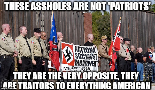 THESE ASSHOLES ARE NOT 'PATRIOTS' THEY ARE THE VERY OPPOSITE, THEY ARE TRAITORS TO EVERYTHING AMERICAN | image tagged in not patriots | made w/ Imgflip meme maker