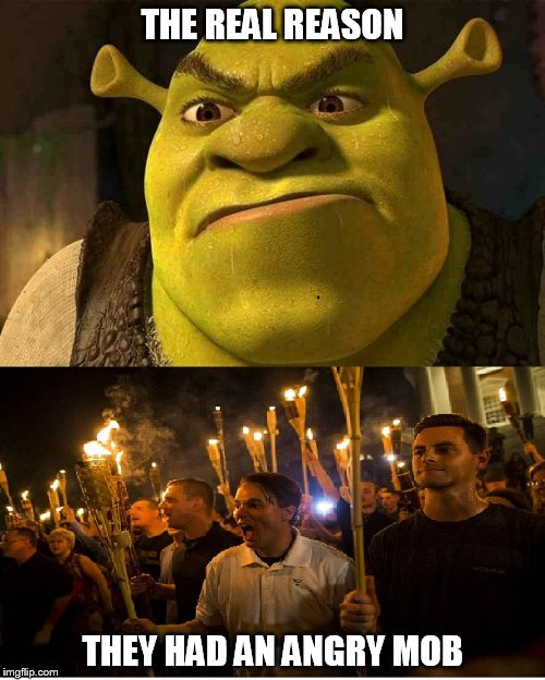 THE REAL REASON THEY HAD AN ANGRY MOB | image tagged in riots,shrek,charlottesville | made w/ Imgflip meme maker