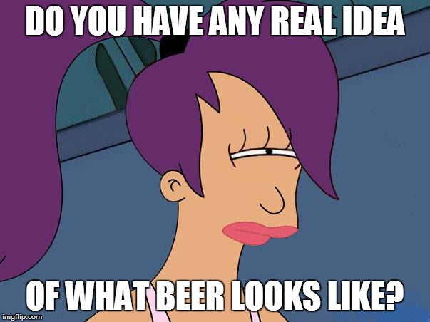 DO YOU HAVE ANY REAL IDEA OF WHAT BEER LOOKS LIKE? | made w/ Imgflip meme maker