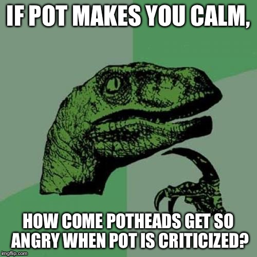 Philosoraptor Meme | IF POT MAKES YOU CALM, HOW COME POTHEADS GET SO ANGRY WHEN POT IS CRITICIZED? | image tagged in memes,philosoraptor | made w/ Imgflip meme maker