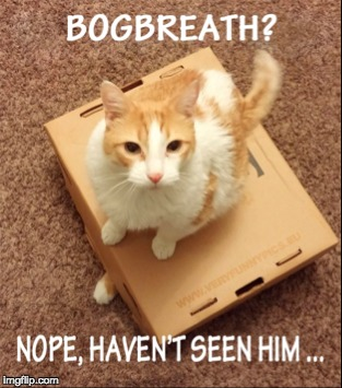 Bogbreath is missing!!! | image tagged in illyriad | made w/ Imgflip meme maker
