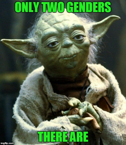 Star Wars Yoda Meme | ONLY TWO GENDERS THERE ARE | image tagged in memes,star wars yoda | made w/ Imgflip meme maker