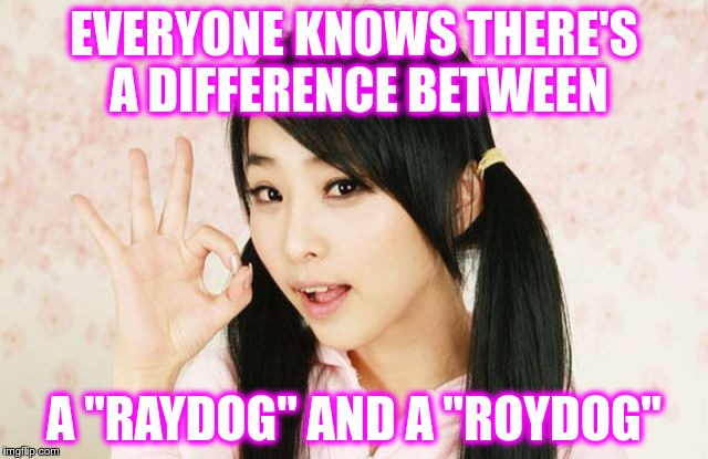 "Asians Do Not Simply | EVERYONE KNOWS THERE'S A DIFFERENCE BETWEEN A ""RAYDOG"" AND A ""ROYDOG"" 