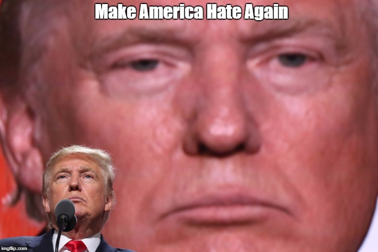 """Make America Hate Again"" 
