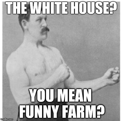 Overly Manly Man That's The Crazies  | THE WHITE HOUSE? YOU MEAN FUNNY FARM? | image tagged in memes,overly manly man,white house | made w/ Imgflip meme maker