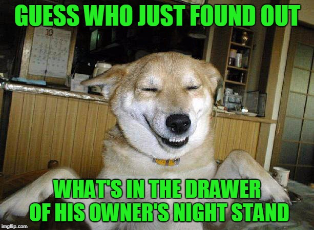 GUESS WHO JUST FOUND OUT WHAT'S IN THE DRAWER OF HIS OWNER'S NIGHT STAND | made w/ Imgflip meme maker
