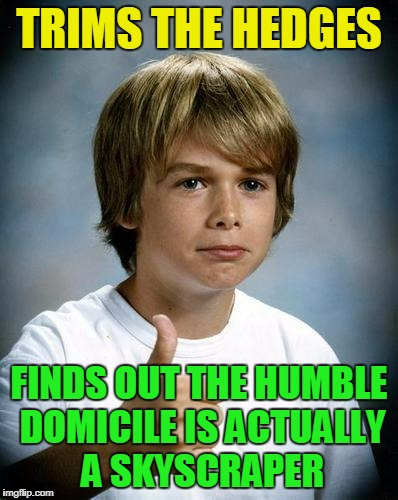 TRIMS THE HEDGES FINDS OUT THE HUMBLE DOMICILE IS ACTUALLY A SKYSCRAPER | made w/ Imgflip meme maker
