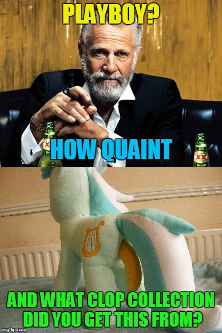 PLAYBOY? AND WHAT CLOP COLLECTION DID YOU GET THIS FROM? HOW QUAINT | made w/ Imgflip meme maker