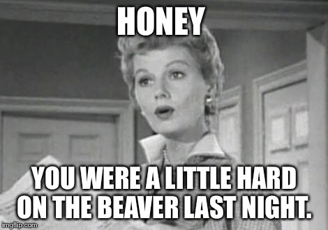 June Cleaver  | HONEY YOU WERE A LITTLE HARD ON THE BEAVER LAST NIGHT. | image tagged in leave it to beaver | made w/ Imgflip meme maker
