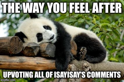 sleeping panda | THE WAY YOU FEEL AFTER UPVOTING ALL OF ISAYISAY'S COMMENTS | image tagged in sleeping panda | made w/ Imgflip meme maker