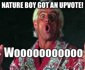 "I ""Figure Four"" Upvotes Should Be Enough... 