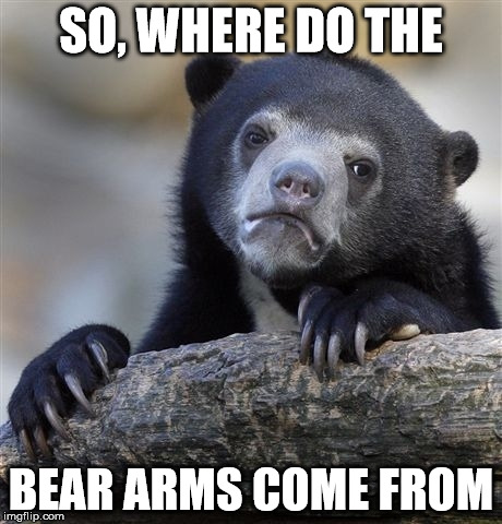 Confession Bear Meme | SO, WHERE DO THE BEAR ARMS COME FROM | image tagged in memes,confession bear | made w/ Imgflip meme maker