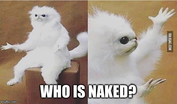WHO IS NAKED? | made w/ Imgflip meme maker