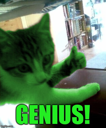 thumbs up RayCat | GENIUS! | image tagged in thumbs up raycat | made w/ Imgflip meme maker