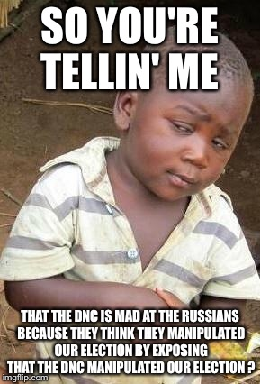 Skeptical African Kid, Solo | SO YOU'RE TELLIN' ME THAT THE DNC IS MAD AT THE RUSSIANS BECAUSE THEY THINK THEY MANIPULATED OUR ELECTION BY EXPOSING THAT THE DNC MANIPULAT | image tagged in skeptical african kid,solo | made w/ Imgflip meme maker