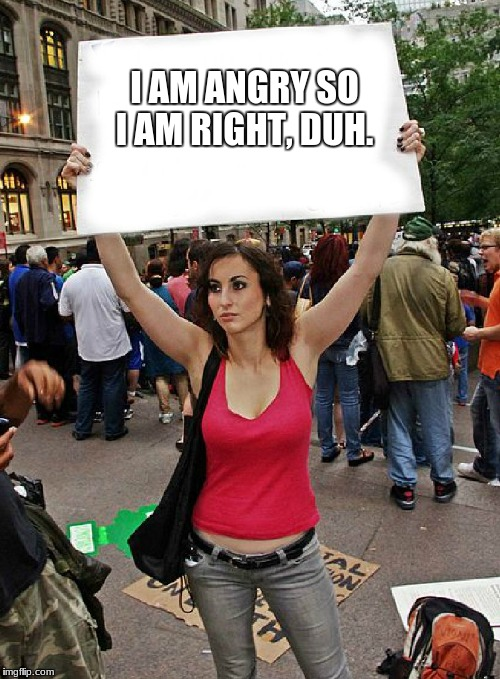 proteste | I AM ANGRY SO I AM RIGHT, DUH. | image tagged in proteste | made w/ Imgflip meme maker