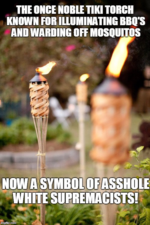 I feel bad for the Tiki Torch | THE ONCE NOBLE TIKI TORCH KNOWN FOR ILLUMINATING BBQ'S AND WARDING OFF MOSQUITOS NOW A SYMBOL OF ASSHOLE WHITE SUPREMACISTS! | image tagged in white supremacy,torch,assholes | made w/ Imgflip meme maker
