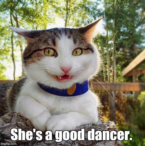Smiling Cat | She's a good dancer. | image tagged in smiling cat | made w/ Imgflip meme maker