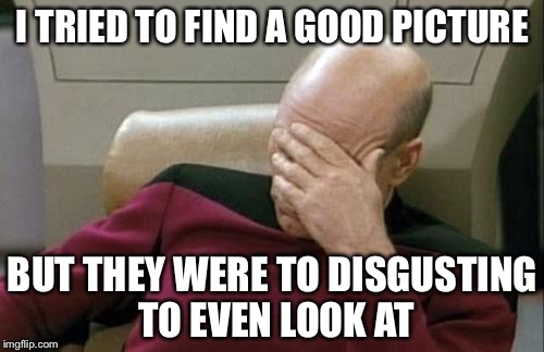 Captain Picard Facepalm Meme | I TRIED TO FIND A GOOD PICTURE BUT THEY WERE TO DISGUSTING TO EVEN LOOK AT | image tagged in memes,captain picard facepalm | made w/ Imgflip meme maker