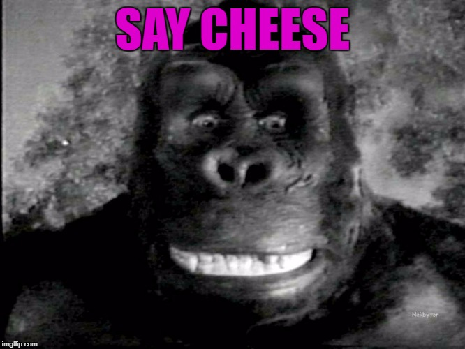 SAY CHEESE | made w/ Imgflip meme maker