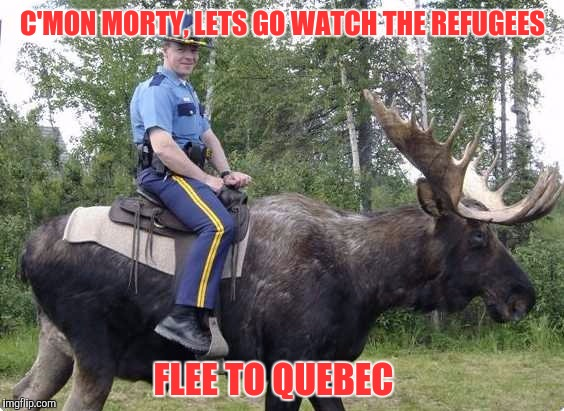 C'MON MORTY, LETS GO WATCH THE REFUGEES FLEE TO QUEBEC | made w/ Imgflip meme maker