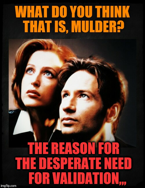 Mulder and Scully gaze to whatever,,, | WHAT DO YOU THINK THAT IS, MULDER? THE REASON FOR THE DESPERATE NEED    FOR VALIDATION,,, | image tagged in mulder and scully gaze to whatever | made w/ Imgflip meme maker