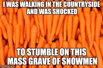 Shocked to find a mass grave | I WAS WALKING IN THE COUNTRYSIDE AND WAS SHOCKED TO STUMBLE ON THIS MASS GRAVE OF SNOWMEN | image tagged in carrots,snowmen | made w/ Imgflip meme maker