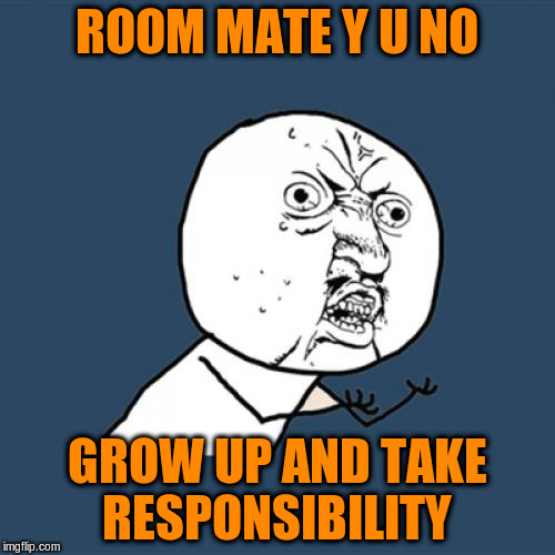 Y U No Meme | ROOM MATE Y U NO GROW UP AND TAKE RESPONSIBILITY | image tagged in memes,y u no | made w/ Imgflip meme maker