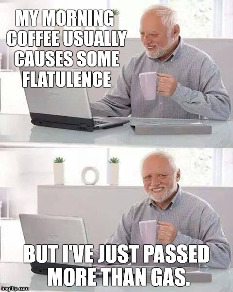 Hide the Stench Harold | MY MORNING COFFEE USUALLY CAUSES SOME FLATULENCE BUT I'VE JUST PASSED MORE THAN GAS. | image tagged in memes,hide the pain harold,farts | made w/ Imgflip meme maker