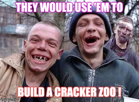 Memes, hillbilly philosophy | THEY WOULD USE 'EM TO BUILD A CRACKER ZOO ! | image tagged in memes,hillbilly philosophy | made w/ Imgflip meme maker