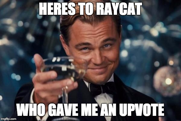 Leonardo Dicaprio Cheers Meme | HERES TO RAYCAT WHO GAVE ME AN UPVOTE | image tagged in memes,leonardo dicaprio cheers | made w/ Imgflip meme maker