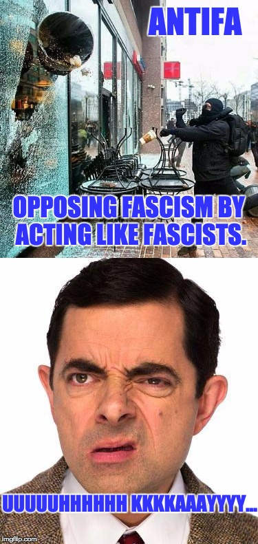 When You Realize You Don't Want To Live On This Planet Anymore | ANTIFA UUUUUHHHHHH KKKKAAAYYYY... OPPOSING FASCISM BY ACTING LIKE FASCISTS. | image tagged in funny,antifa,facism | made w/ Imgflip meme maker