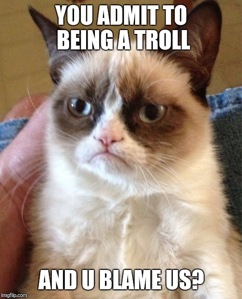 Grumpy Cat Meme | YOU ADMIT TO BEING A TROLL AND U BLAME US? | image tagged in memes,grumpy cat | made w/ Imgflip meme maker
