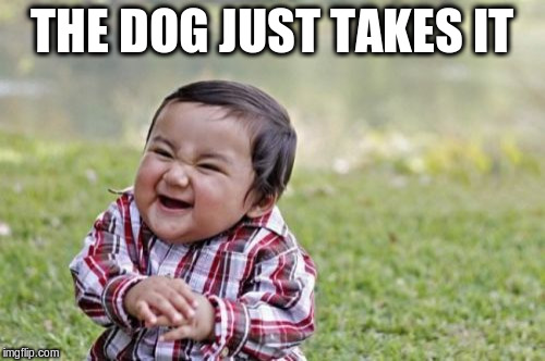 Evil Toddler Meme | THE DOG JUST TAKES IT | image tagged in memes,evil toddler | made w/ Imgflip meme maker